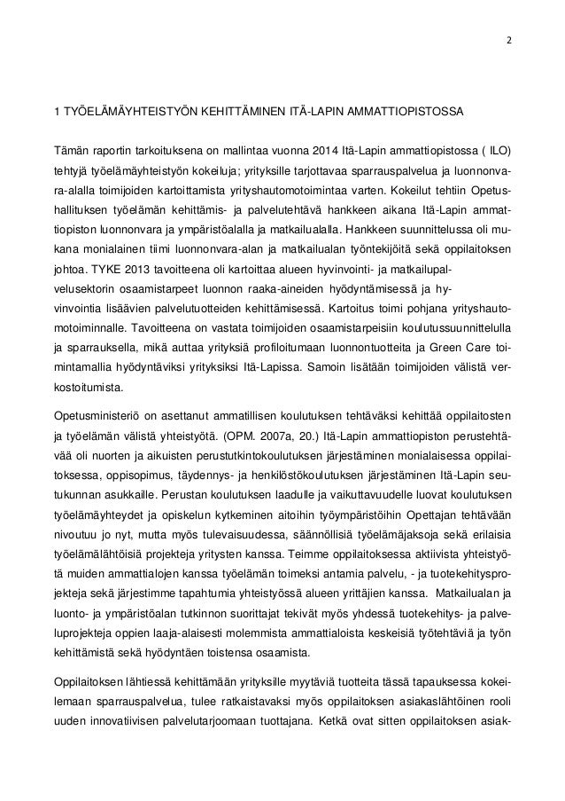 Raportti Esimerkki