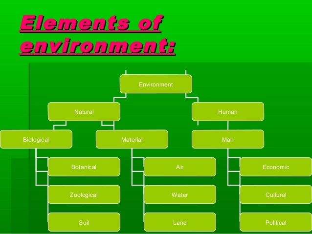 elements of business environment essay It is the environment in which the firm operates to achieve its objectives and which can be influenced by the firm to manage risk the internal context is considered having more factors than.