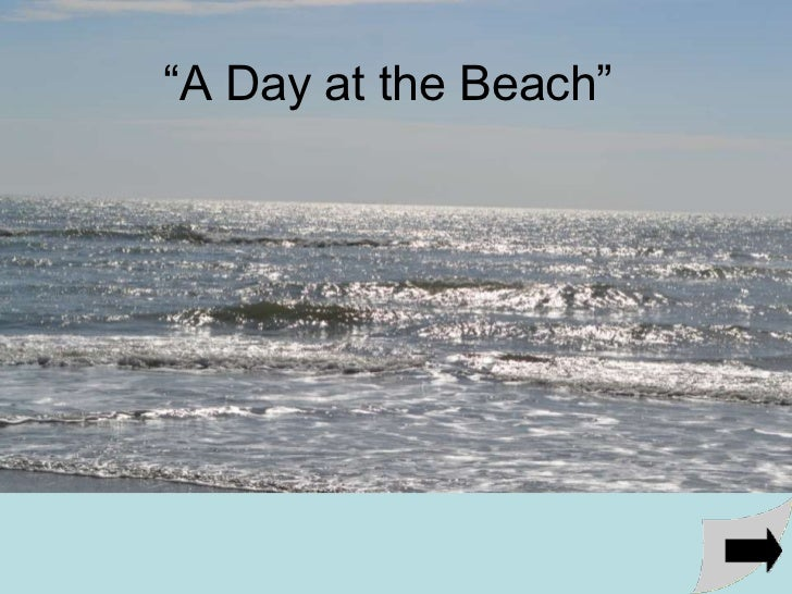 """""""A Day at the Beach"""""""
