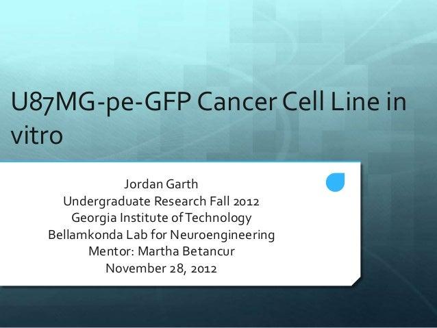 U87MG-pe-GFP Cancer Cell Line in vitro Jordan Garth Undergraduate Research Fall 2012 Georgia Institute ofTechnology Bellam...