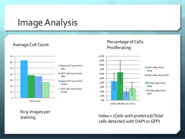 ImageAnalysis 0 10 20 30 40 50 60 70 Cell Count Dapi cell Count from Ki67 GFP cell Count from Ki67 Dapi cell Count from PC...