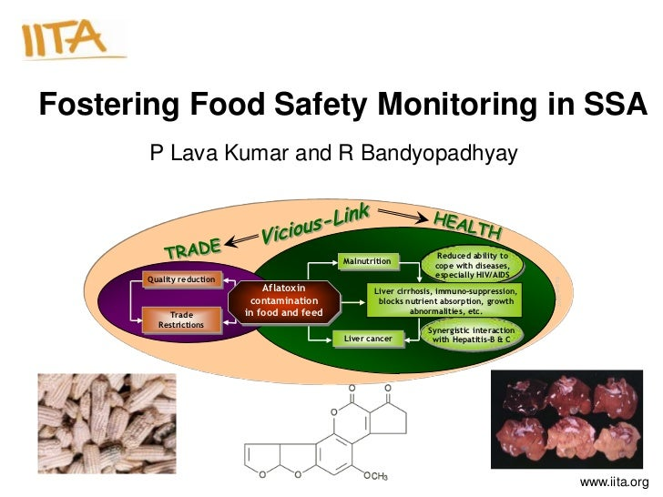 Fostering Food Safety Monitoring in SSA       P Lava Kumar and R Bandyopadhyay                                            ...