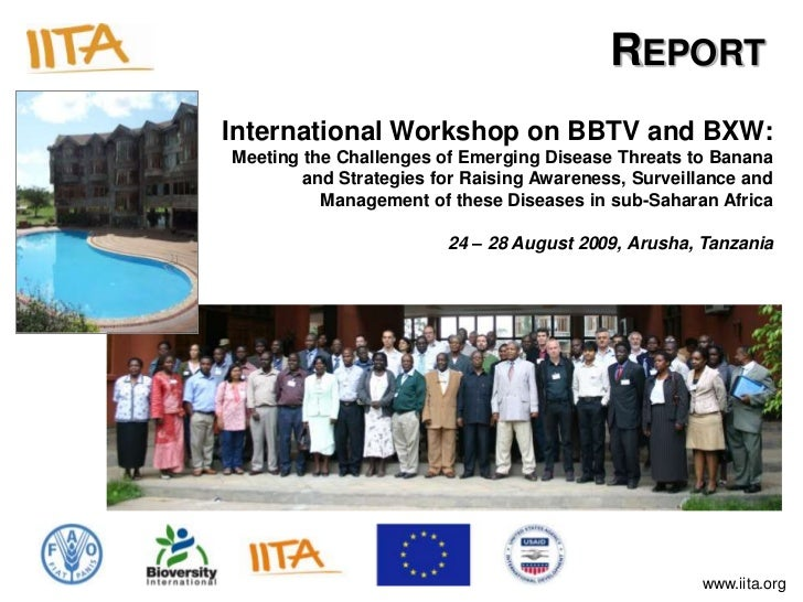 REPORTInternational Workshop on BBTV and BXW:Meeting the Challenges of Emerging Disease Threats to Banana        and Strat...