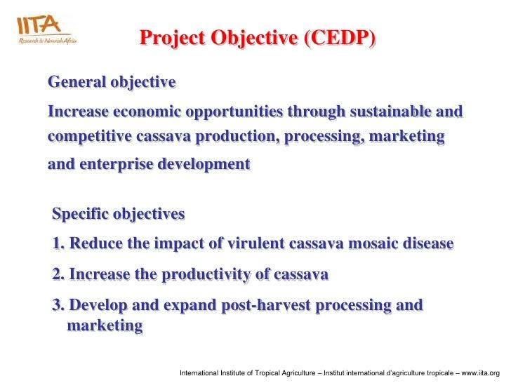 Cassava Enterprise Development Project (CEDP) - Achievements