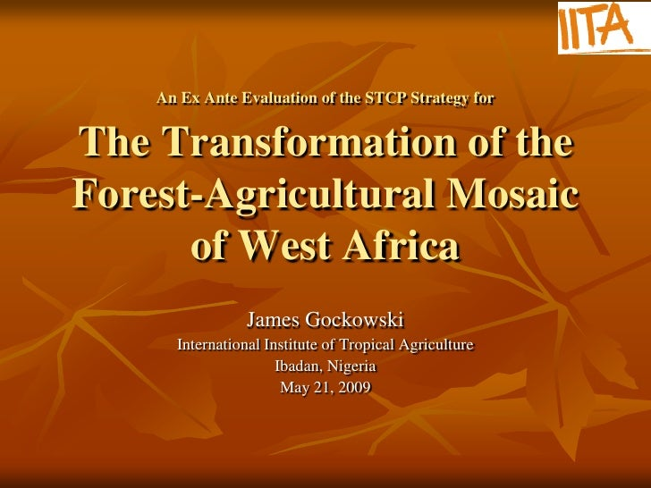 An Ex Ante Evaluation of the STCP Strategy forThe Transformation of theForest-Agricultural Mosaic      of West Africa     ...