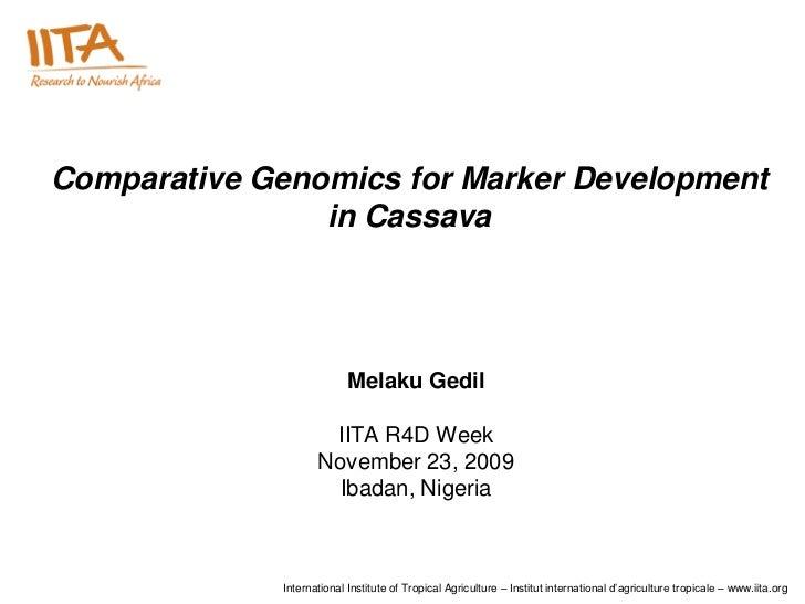 Comparative Genomics for Marker Development                in Cassava                           Melaku Gedil              ...