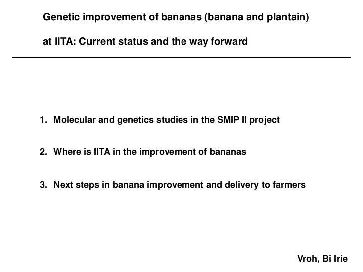 Genetic improvement of bananas (banana and plantain)at IITA: Current status and the way forward1. Molecular and genetics s...
