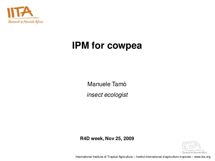 IPM for cowpea         Manuele Tamò         insect ecologist   R4D week, Nov 25, 2009International Institute of Tropical A...