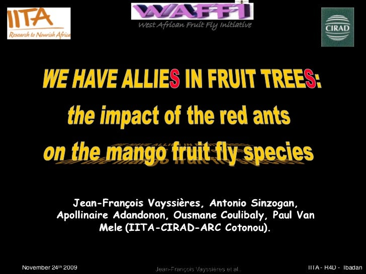 West African Fruit Fly Initiative              Jean-François Vayssières, Antonio Sinzogan,              Jean-Franç     Vay...