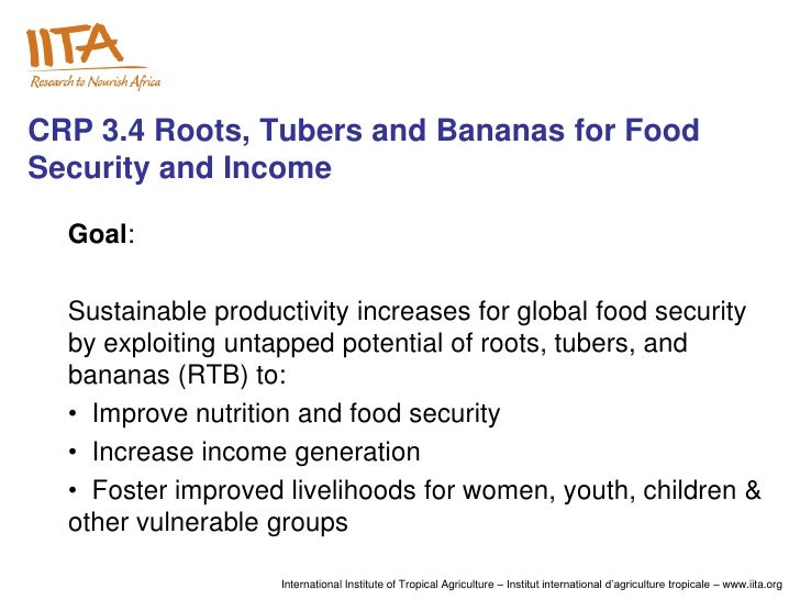 CRP 3.4 Roots, Tubers and Bananas for FoodSecurity and Income  Goal:  Sustainable productivity increases for global food s...