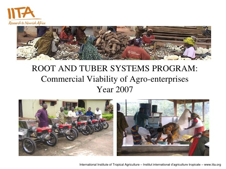 ROOT AND TUBER SYSTEMS PROGRAM:  Commercial Viability of Agro-enterprises               Year 2007            International...