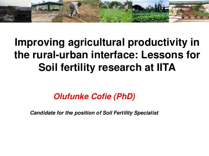 Improving agricultural productivity inthe rural-urban interface: Lessons for     Soil fertility research at IITA          ...
