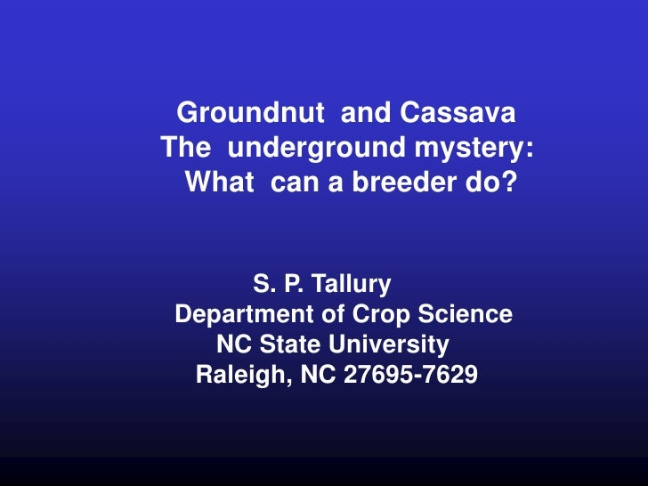 Groundnut and CassavaThe underground mystery: What can a breeder do?      S. P. TalluryDepartment of Crop Science   NC Sta...