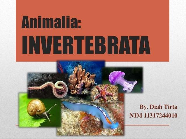 Ppt Invertebrata