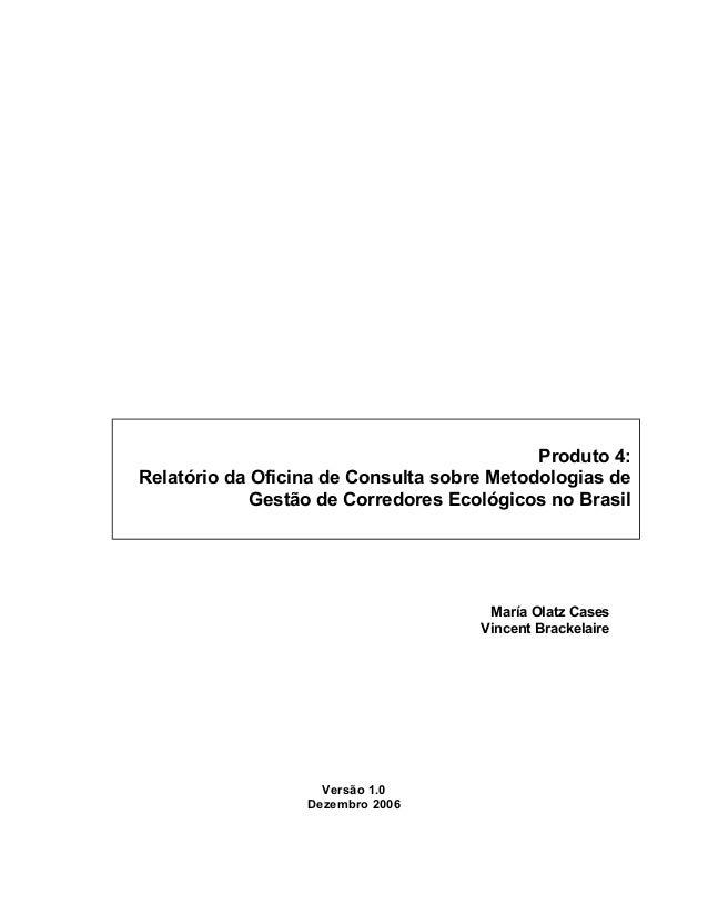 María Olatz Cases Vincent Brackelaire Versão 1.0 Dezembro 2006 Produto 4: Relatório da Oficina de Consulta sobre Metodolog...