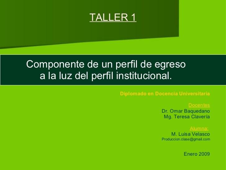 TALLER 1 Componente de un perfil de egreso a la luz del perfil institucional. Diplomado en Docencia Universitaria Docentes...