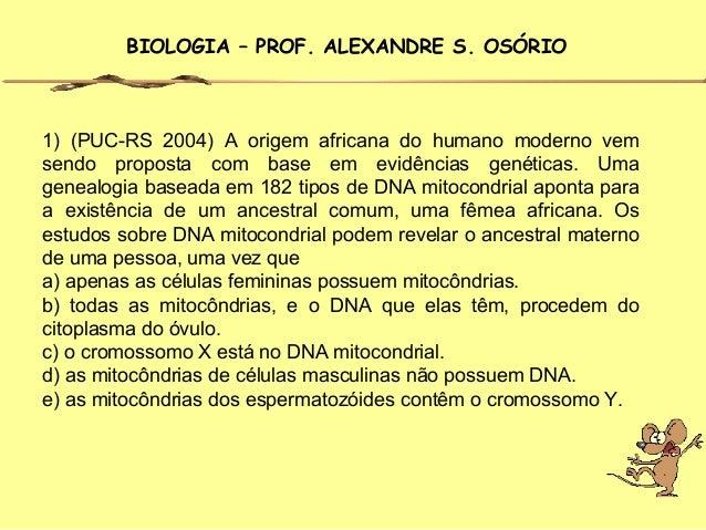 BIOLOGIA – PROF. ALEXANDRE S. OSÓRIO1) (PUC-RS 2004) A origem africana do humano moderno vemsendo proposta com base em evi...