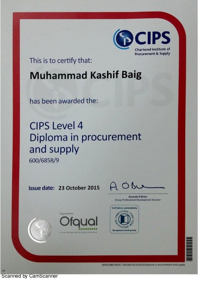 cips level 4