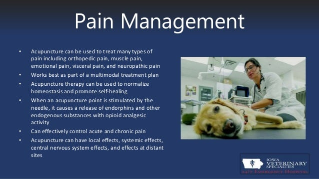 acupuncture for pain management Acupuncture for pain management acupuncture is a complementary medicine practice used to treat a broad variety of physical, emotional, and mental health concerns at complete harmony, many of our clients report proven success with acupuncture therapy for management of pain, withdrawal symptoms, insomnia, anxiety, and more.