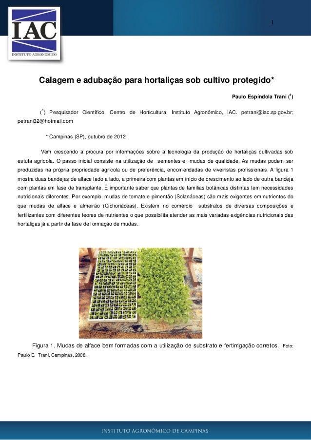 1 Calagem e adubação para hortaliças sob cultivo protegido* Paulo Espíndola Trani ( 1 ) ( 1 ) Pesquisador Científico, Cent...