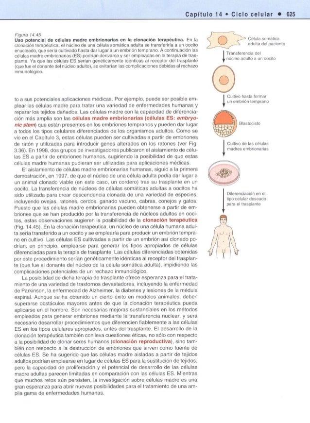 Biologia celular cooper-la-celula