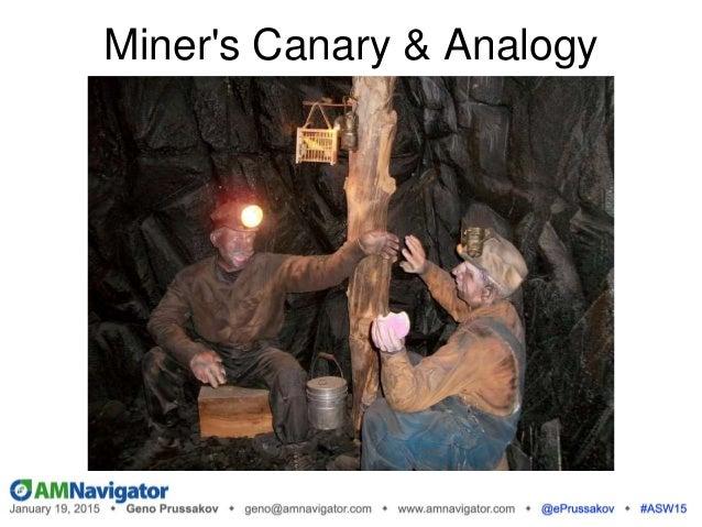 Miner's Canary & Analogy