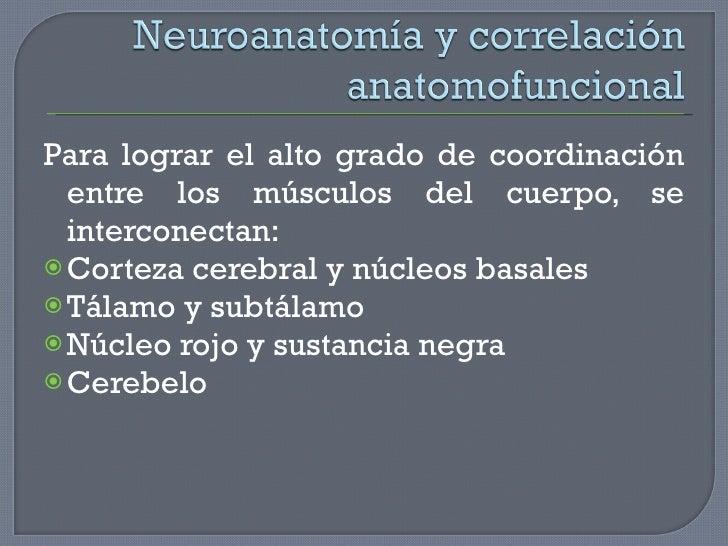 <ul><li>Para lograr el alto grado de coordinación entre los músculos del cuerpo, se interconectan: </li></ul><ul><li>Corte...