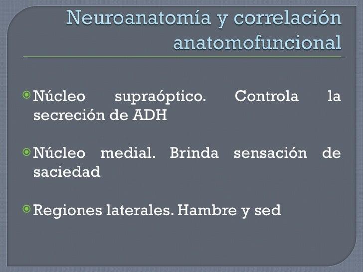 <ul><li>Núcleo supraóptico. Controla la secreción de ADH </li></ul><ul><li>Núcleo medial. Brinda sensación de saciedad </l...