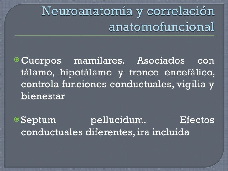 <ul><li>Cuerpos mamilares. Asociados con tálamo, hipotálamo y tronco encefálico, controla funciones conductuales, vigilia ...