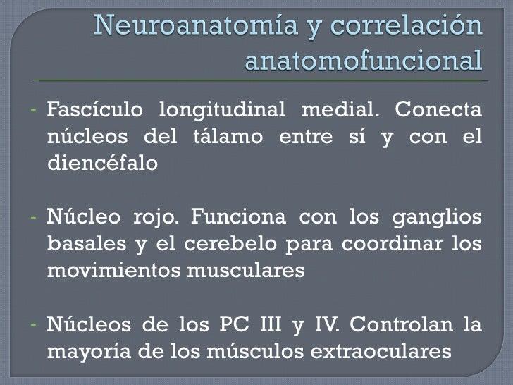 <ul><li>Fascículo longitudinal medial. Conecta núcleos del tálamo entre sí y con el diencéfalo </li></ul><ul><li>Núcleo ro...