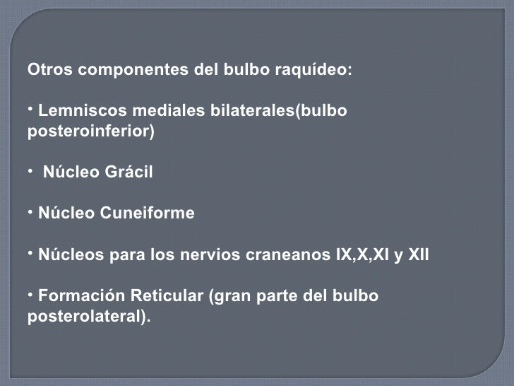 <ul><li>Otros componentes del bulbo raquídeo: </li></ul><ul><li>Lemniscos mediales bilaterales(bulbo posteroinferior) </li...