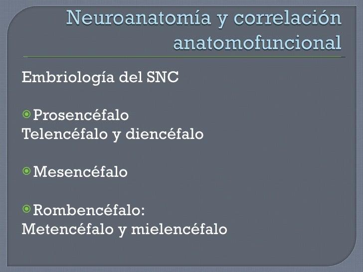 <ul><li>Embriología del SNC </li></ul><ul><li>Prosencéfalo </li></ul><ul><li>Telencéfalo y diencéfalo </li></ul><ul><li>Me...