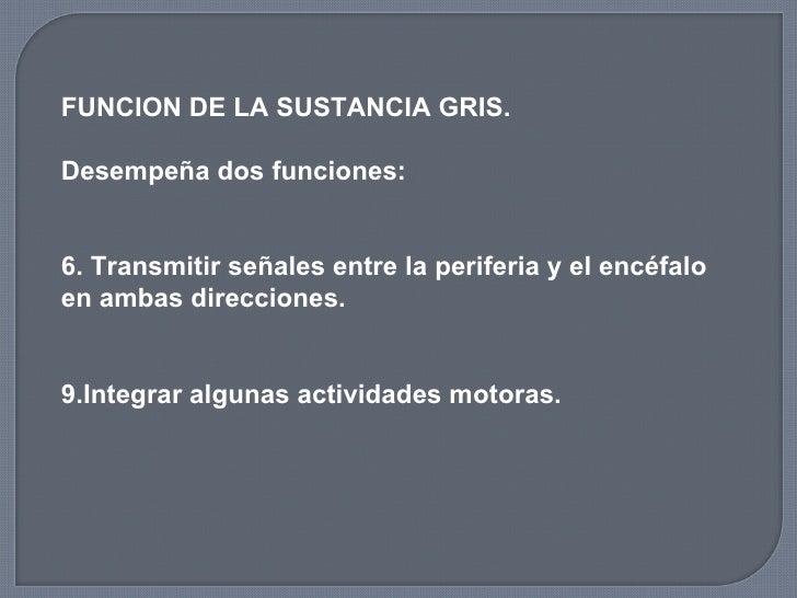 <ul><li>FUNCION DE LA SUSTANCIA GRIS. </li></ul><ul><li>Desempeña dos funciones: </li></ul><ul><li>Transmitir señales entr...