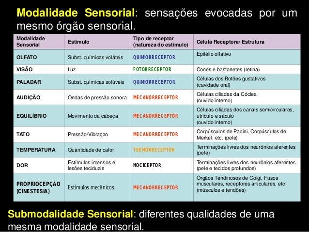 Estruturalmente, os receptores somáticos sãoneurônios sensoriais de dois tipos: Terminação Livre Encapsulado