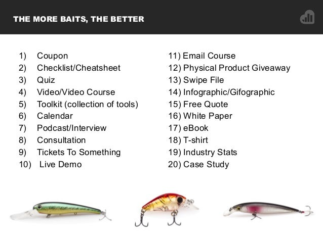 THE MORE BAITS, THE BETTER 1) Coupon 2) Checklist/Cheatsheet 3) Quiz 4) Video/Video Course 5) Toolkit (collection of tools...