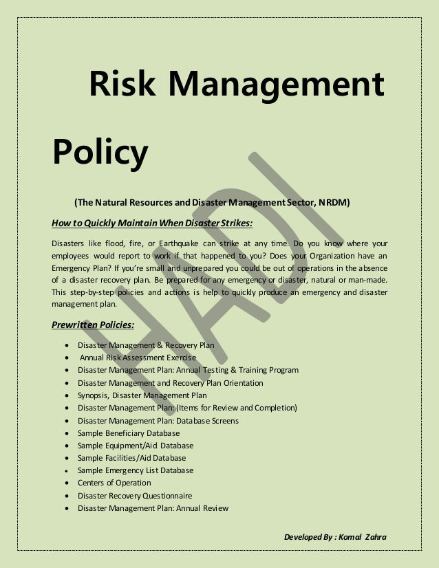 Ideas collection for risk policy template about summary sample.