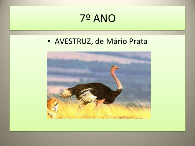 7º ANO• AVESTRUZ, de Mário Prata