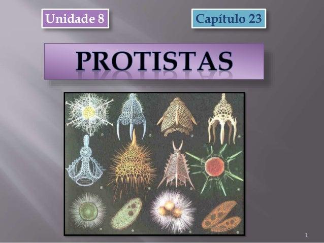 Unidade 8 1 Capítulo 23