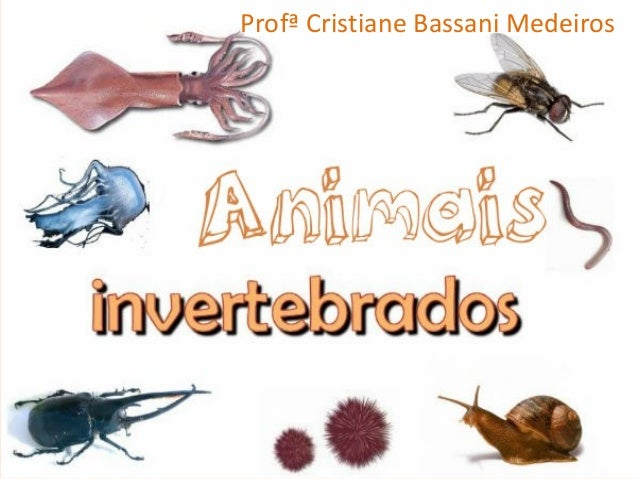 Profª Cristiane Bassani Medeiros
