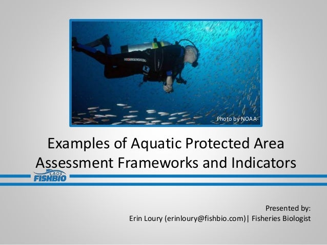 Examples of Aquatic Protected Area Assessment Frameworks and Indicators Presented by: Erin Loury (erinloury@fishbio.com)| ...