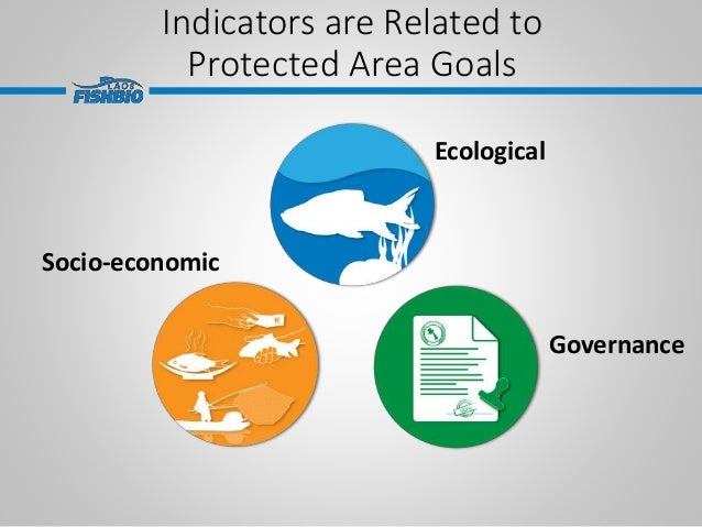 Indicators are Related to Protected Area Goals Ecological Socio-economic Governance