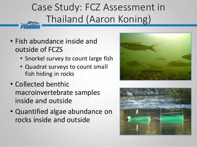 Case Study: FCZ Assessment in Thailand (Aaron Koning) • Fish abundance inside and outside of FCZS • Snorkel survey to coun...