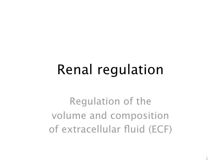 Renal regulation      Regulation of the volume and composition of extracellular fluid (ECF)                                1
