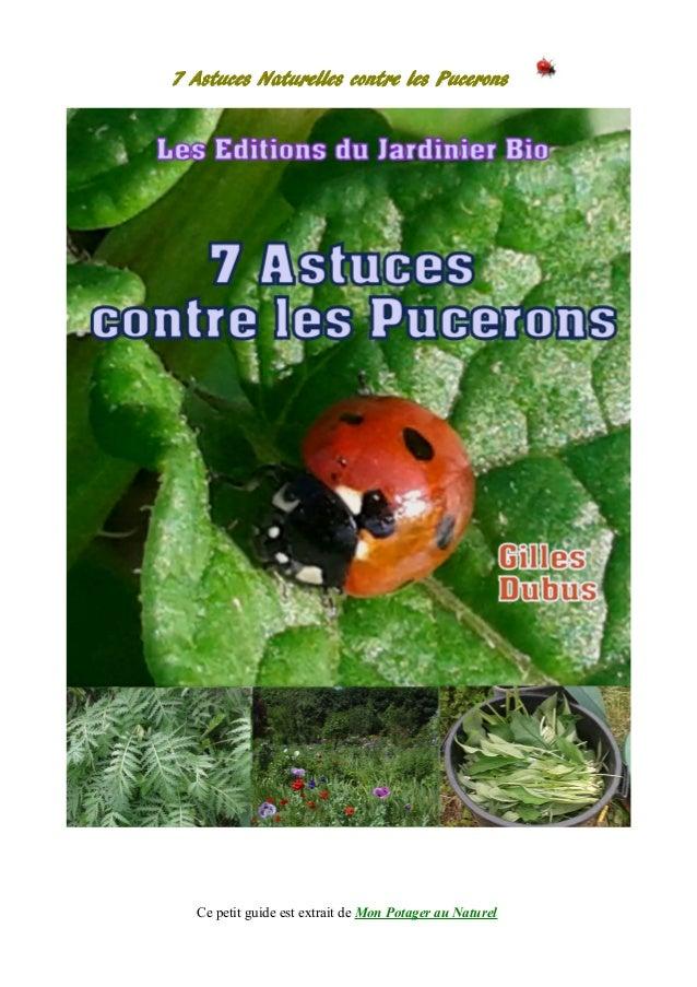 7 Astuces Naturelles contre les Pucerons Ce petit guide est extrait de Mon Potager au Naturel