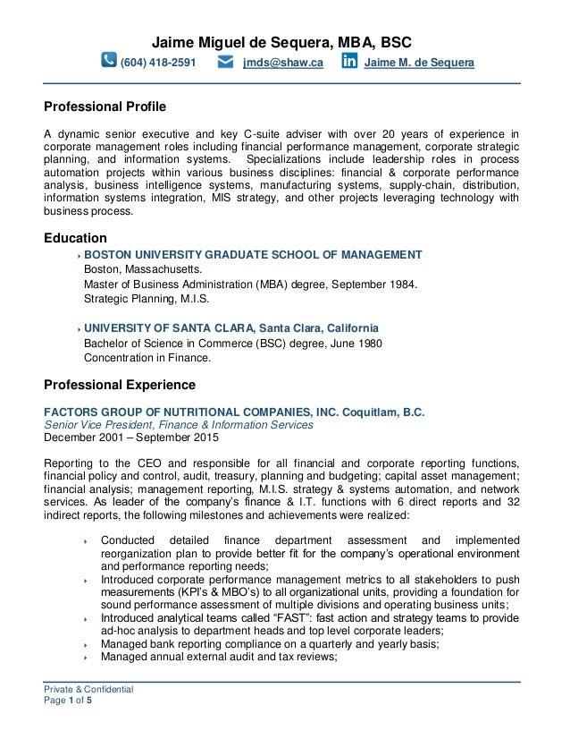 professional profile cv