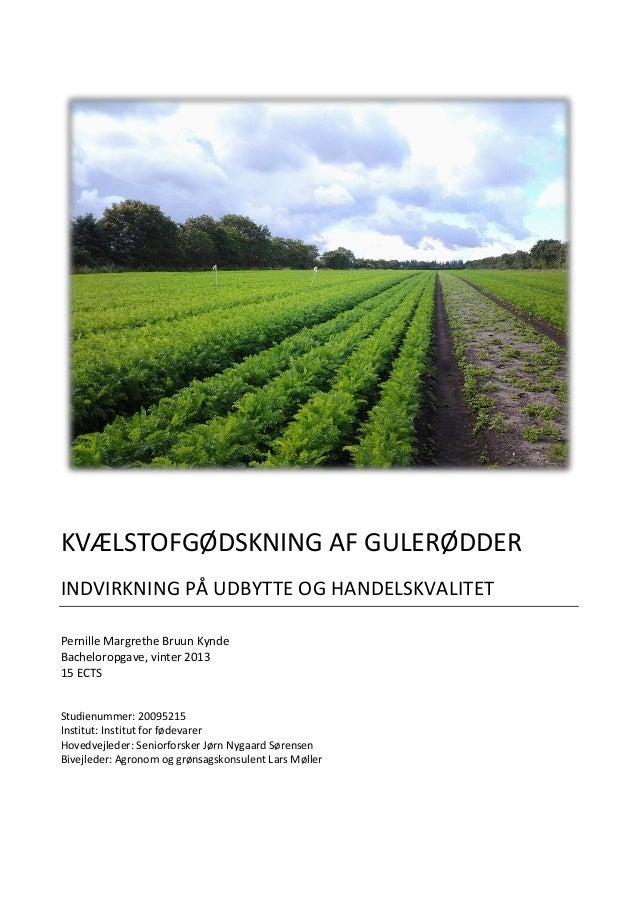 KVÆLSTOFGØDSKNING AF GULERØDDER INDVIRKNING PÅ UDBYTTE OG HANDELSKVALITET Pernille Margrethe Bruun Kynde Bacheloropgave, v...