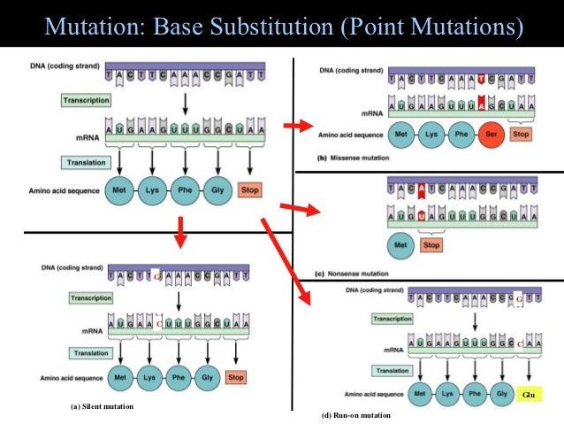 7b mutation