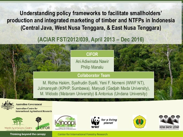 Understanding policy frameworks to facilitate smallholders' production and integrated marketing of timber and NTFPs in Ind...
