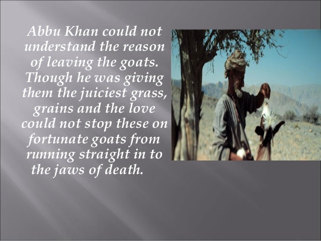 Abbu Khan could not understand the reason of leaving the goats. Though he was giving them the juiciest grass, grains and t...