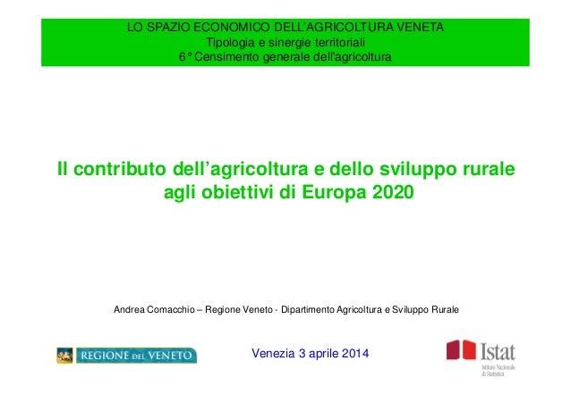 LO SPAZIO ECONOMICO DELL'AGRICOLTURA VENETA Tipologia e sinergie territoriali 6°Censimento generale dell'agricoltura Il co...